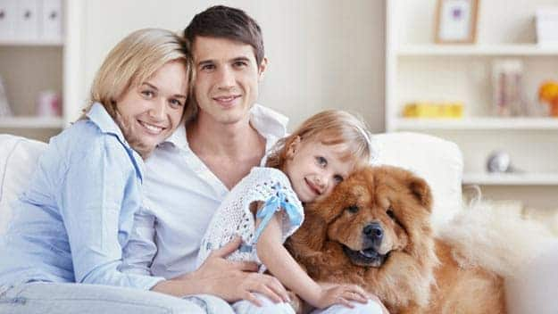 Wills & Trusts dog-young-family Direct Wills Ambleside